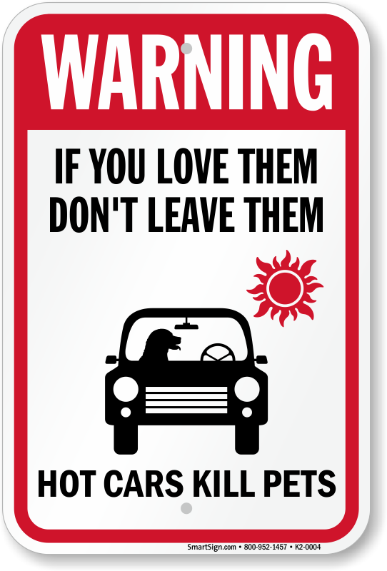 Leave Dog In Car On Cool Day
